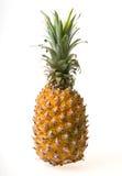Ripe pineapple isolated. On White Blackgroud Royalty Free Stock Image