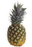 Ripe pineapple Royalty Free Stock Photo