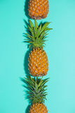 Ripe pineapple over the light blue background. stock image