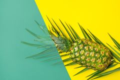 Ripe pineapple on palm leaf on duotone yellow green background. Trendy funky style. Summer vacation tropical fruits beach party. Concept. Flat lay copy space royalty free stock photos