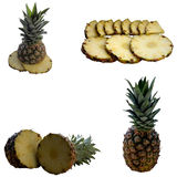 Ripe pineapple. Royalty Free Stock Images