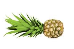 Ripe pineapple Stock Image
