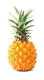 Ripe pineapple Stock Photography