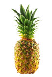 Ripe pineapple  on white Stock Image