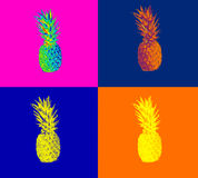 Ripe pineapple on white background, pineapple on isolated background. stylizen. Ripe pineapple on white background, pineapple on isolated background. juicy fruit Royalty Free Stock Images