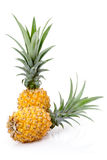 Ripe Pineapples. Two ripe Pineapples isolated on white background Royalty Free Stock Photography