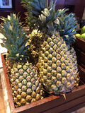 Ripe pineapples Stock Photos