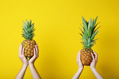 Ripe pineapples Stock Images