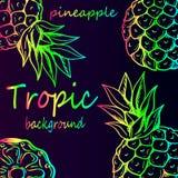 Ripe pineapples rainbow pattern Stock Photography