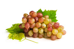 Ripe pink grapes Royalty Free Stock Photo