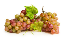Ripe pink grapes Royalty Free Stock Photography