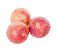 Ripe pink pluots isolated on white background. Royalty Free Stock Images