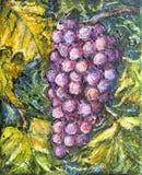 Ripe Pinot Grigio Grape Painting. Painting of organic ripe pinot grigio or pinot gris grape in a vineyard Royalty Free Stock Image
