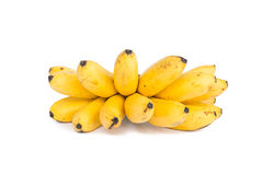Ripe Pisang Mas banana Royalty Free Stock Photos