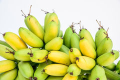 Ripe Pisang Mas banana or Musa :Kluai Khai, famous small golden Stock Image