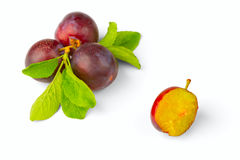 Ripe plum. On a white background Royalty Free Stock Photography