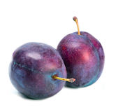 Ripe plum. Close up on a white background Royalty Free Stock Photo