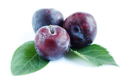Ripe plum close-up and green leaves Stock Images