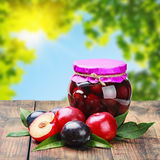 Ripe plum and fresh canned plum Stock Photos