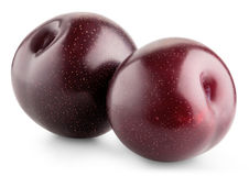 Ripe plum fruit Stock Photo