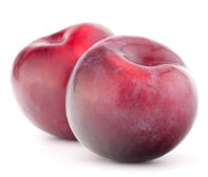 Ripe plum  fruit Royalty Free Stock Image