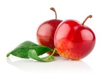 Ripe plum fruits with green leaves Stock Photography