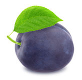 Ripe plum with green leaf. With clipping path Royalty Free Stock Photography