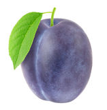 Ripe plum with green leaf. With clipping path Stock Photography