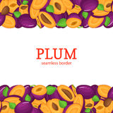 Ripe plum Horizontal seamless border. Vector illustration card top and bottom Juisy  fruits whole  slice, leaf, seed Stock Image