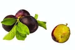 Ripe plum. Isolated on white background Stock Image