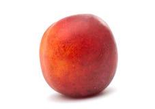 Ripe plum isolated Royalty Free Stock Image