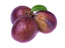 Ripe plum with leaf Royalty Free Stock Photography