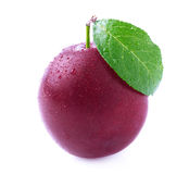 Ripe plum with leaf. Stock Images