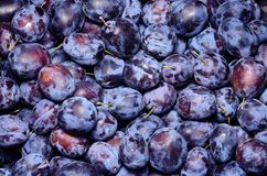 Ripe plum in the market Royalty Free Stock Photography