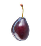 Ripe plum Stock Photos