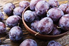 Ripe plum. space for text. Ripe plum with  top view.new agricultural crop Stock Photography