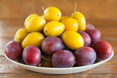 Ripe plum on table Stock Image