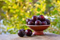Ripe plum on table in ceramic vase Royalty Free Stock Images