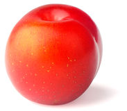 Ripe plum on white backgaund Stock Photos