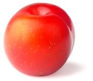 Ripe plum on white backgaund Stock Photos