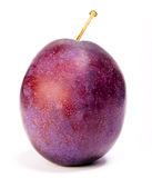 Ripe plum on a white background Stock Images