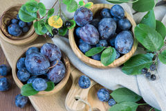 Ripe plums Royalty Free Stock Photo