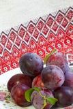 Ripe plums stock image