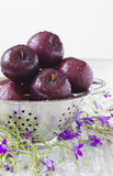 Ripe plums in a colander Royalty Free Stock Photos