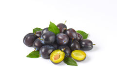 Ripe plums stock photography