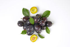 Ripe plums royalty free stock images