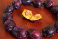 Ripe plums II royalty free stock image
