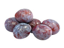 Ripe plums.Isolated. Stock Image