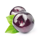 Ripe plums Stock Photos