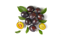 Ripe plums royalty free stock photos